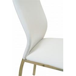 Silla Agus - Unican